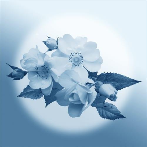 Inspiration du fleuriste | budgets variés